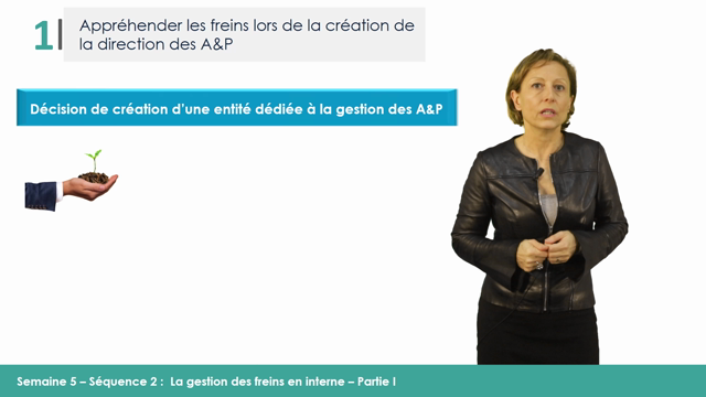 MOOC MAPS - S5V2 - La gestion des freins en interne - Part I - Laurence Dugué Part I