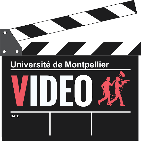 Rencontre video des iut de france